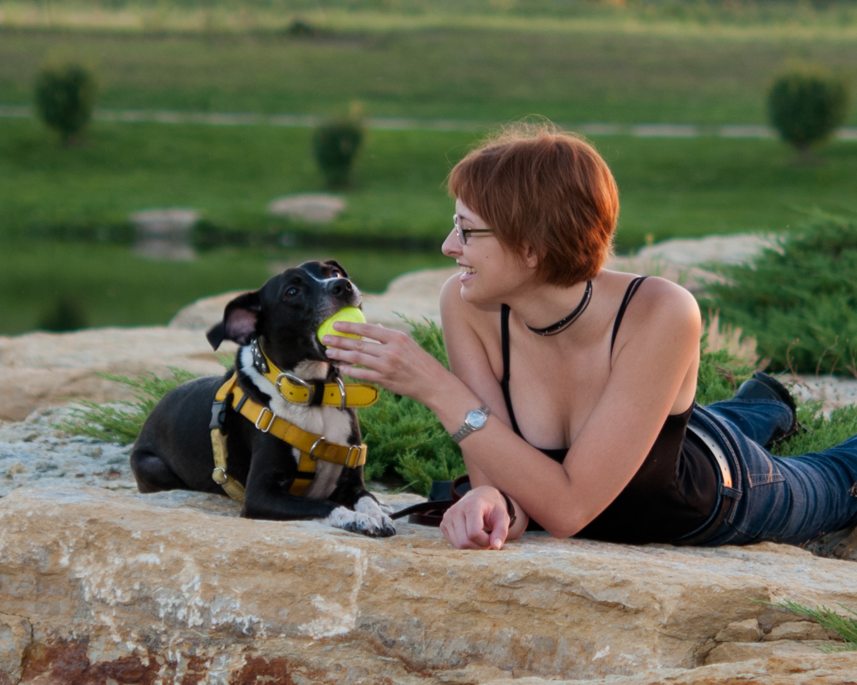 Saying goodbye making the decision to euthanize your dog paws photo by kelvin andow solutioingenieria Choice Image
